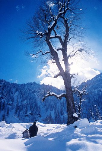 Solang Valley in the winter, Himachal Pradesh, India.....my place