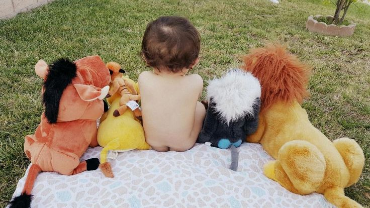 My Nephew's 1st Birthday. Taking it old school with a Classic. A Lion King themed Birthday Party.