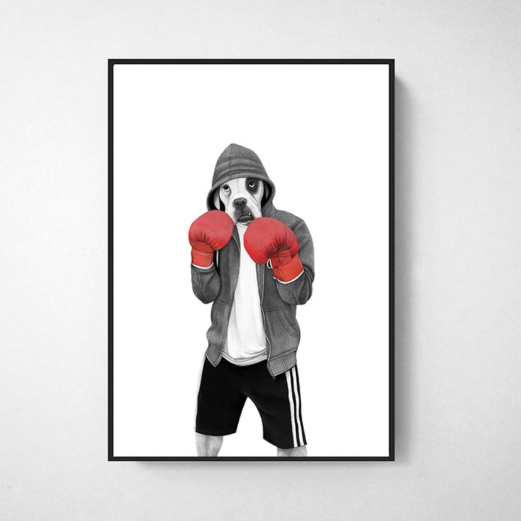Street boxer  Hand drawn illustration made by Sanna Wieslander.  Available as signed art prints and posters in several different sizes at www.sannawieslander.com
