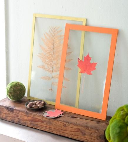 Leaf prints  Highlight the beauty of fall leaves by pressing them in frames. Pick a variety of colors, shapes and textures to include in the frames. To make the display pictured: Place a leaf between two pieces of glass and secure with colored linen book cloth tape.
