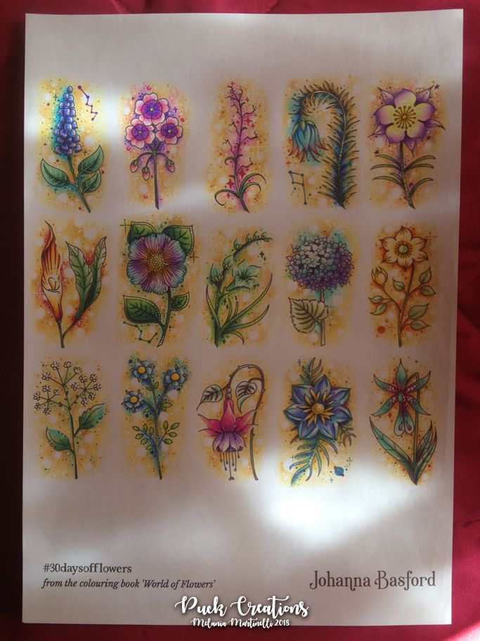 30 Days Of Flowers From World Of Flowers Coloring Book By Johanna