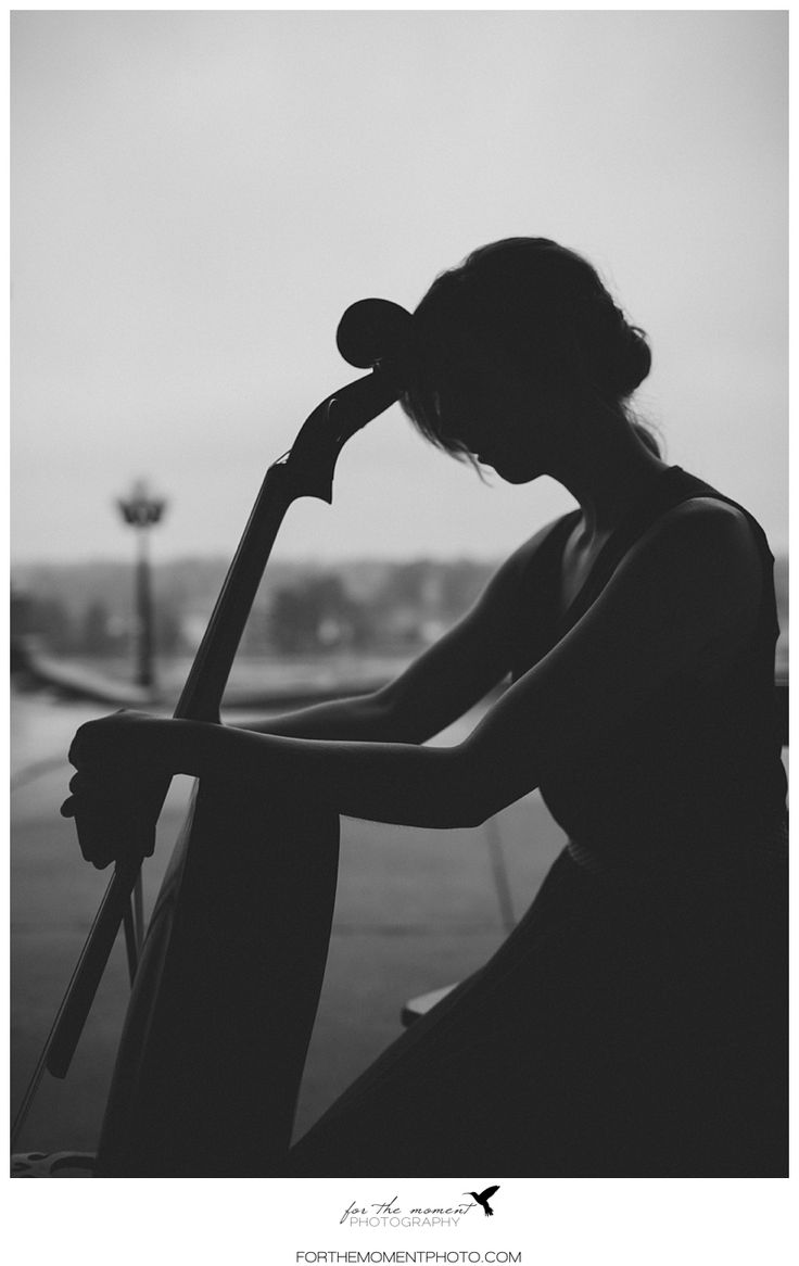best 25  cello photography ideas on pinterest