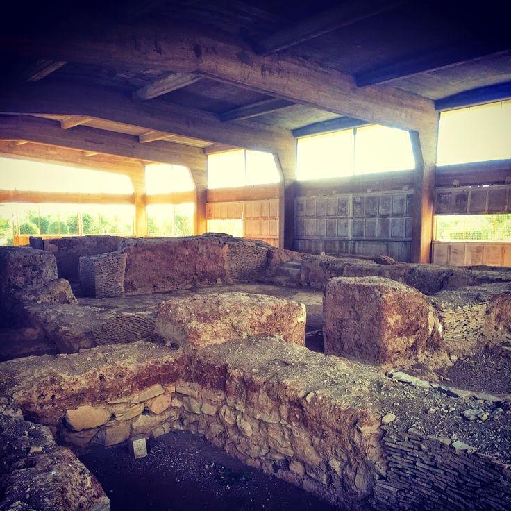 Πιγκουίνος: Τα κεφάλια της Λερναίας Ύδρας #hydra #lerna #monster #hercules #ancient #greece #hellas #monuments