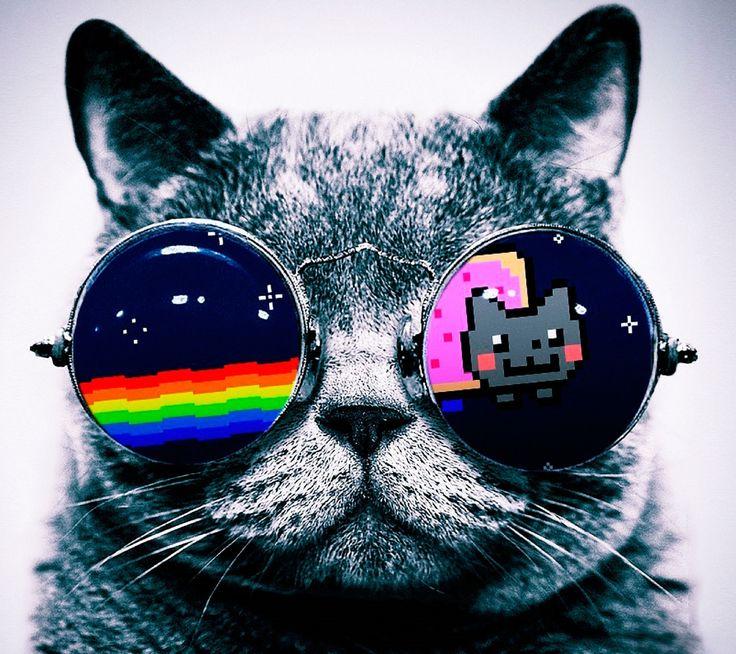 nyan_cat http://ift.tt/2eyjZog
