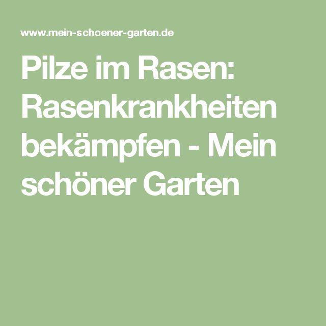 Pilze im Rasen: Rasenkrankheiten bekämpfen - Mein schöner Garten