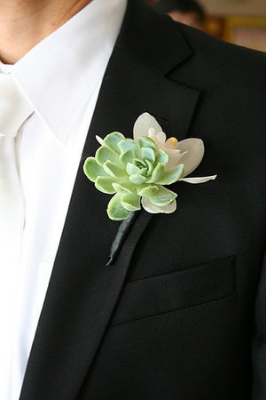 Boutonniere. Succulent. Mini Cymbidium Orchid. White and Green. Chicago Wedding. Vale of Enna Flowers.