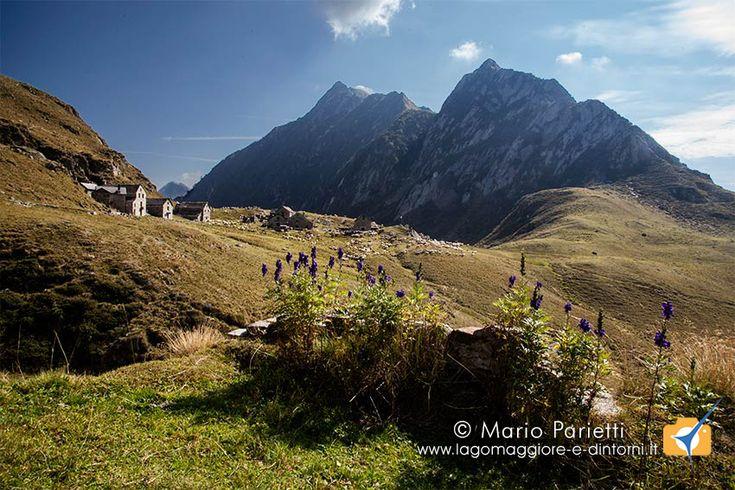 Bellissima passeggiata in valle Anzasca tra bellissimi paesaggi ed i ruderi di villa Aprilia distrutta dai tedeschi durante la seconda guerra mondiale