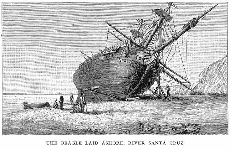 HMS Beagle - Military Wiki