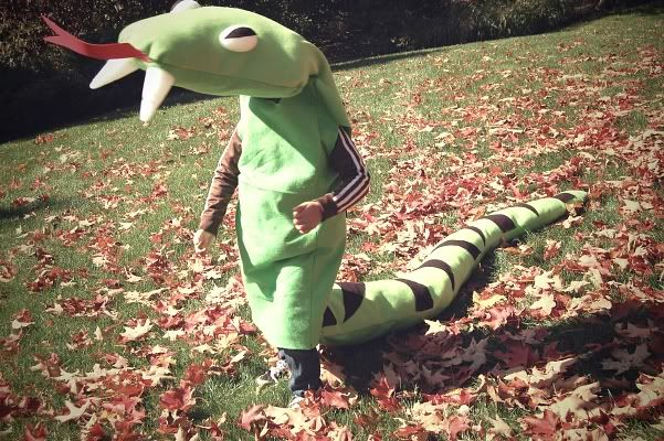 Cutest Handmade Halloween costumes for kids: felt stuffed snake