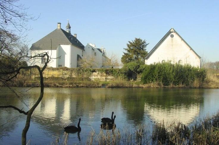 http://members.chello.nl/wp.vanteffelen/websiteuiterwaarden/images/natuur21-2-03_009a.jpg