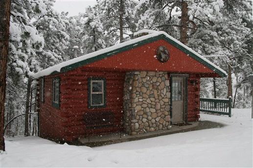 Bailey View Cabin - Bailey, CO
