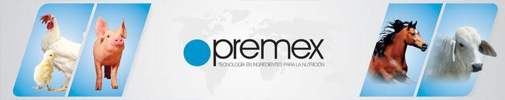Premex es una inversión colombiana, dedicada a la fabricación de pre-mezclas de concentrados para animales.  Instaló en el año 2008 su planta procesadora en el municipio de Villa Nueva.  Desde Guatemala provee a los países de Centroamérica, Panamá y en mediano plazo al sur de México.  Premex informó a Invest in Guatemala que este país fue seleccionado entre Honduras y Costa Rica ya que cuenta con la mejor infraestructura de carreteras, de telecomunicaciones y servicios…