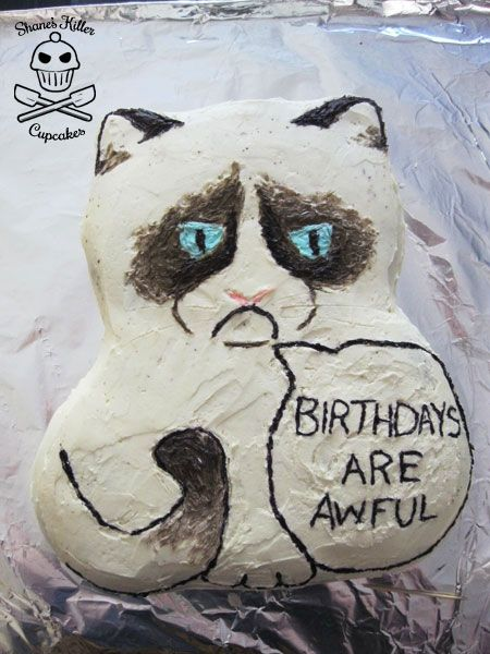 25 Best Grumpy Cat Cakes Ideas On Pinterest