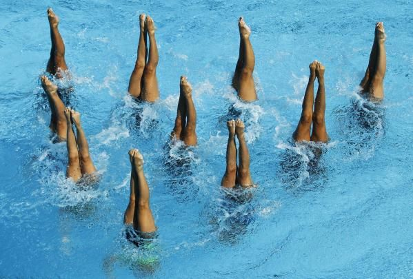 synchronized swimmers (legs)