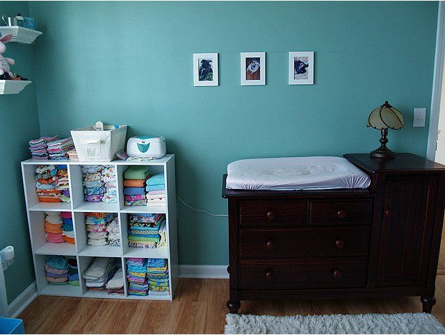 cloth diaper storage ideas (videos!) and huge PHOTOBOMB LOL - Cloth Diapering - BabyCenter