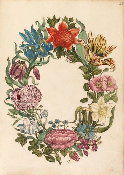Maria Sibylla Merian: New book of flowers
