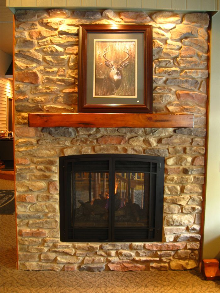 Kozy Heat Trimont See Thru Fireplace