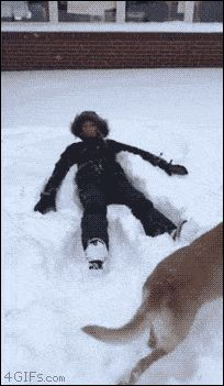 21 Best GIFs Of All Time Of The Week #174 from best GOAT and Best of the Web