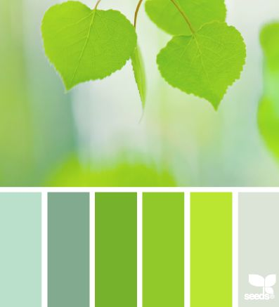 Leafed Brights | 10 Gorgeous Spring Color Palettes for Your Graphic Designs