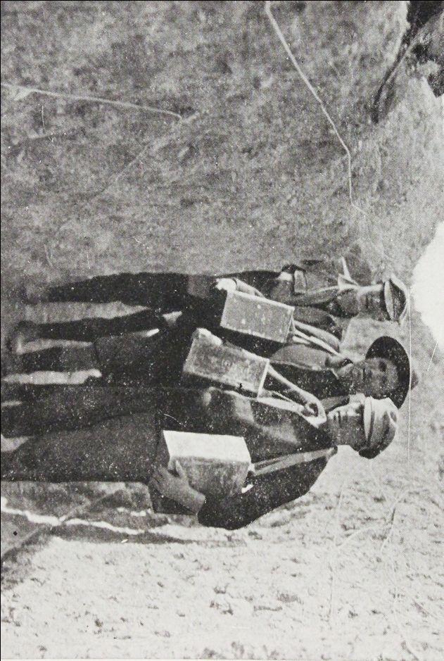 World War One – Gallipoli – the Jewish Mule Supply Unit
