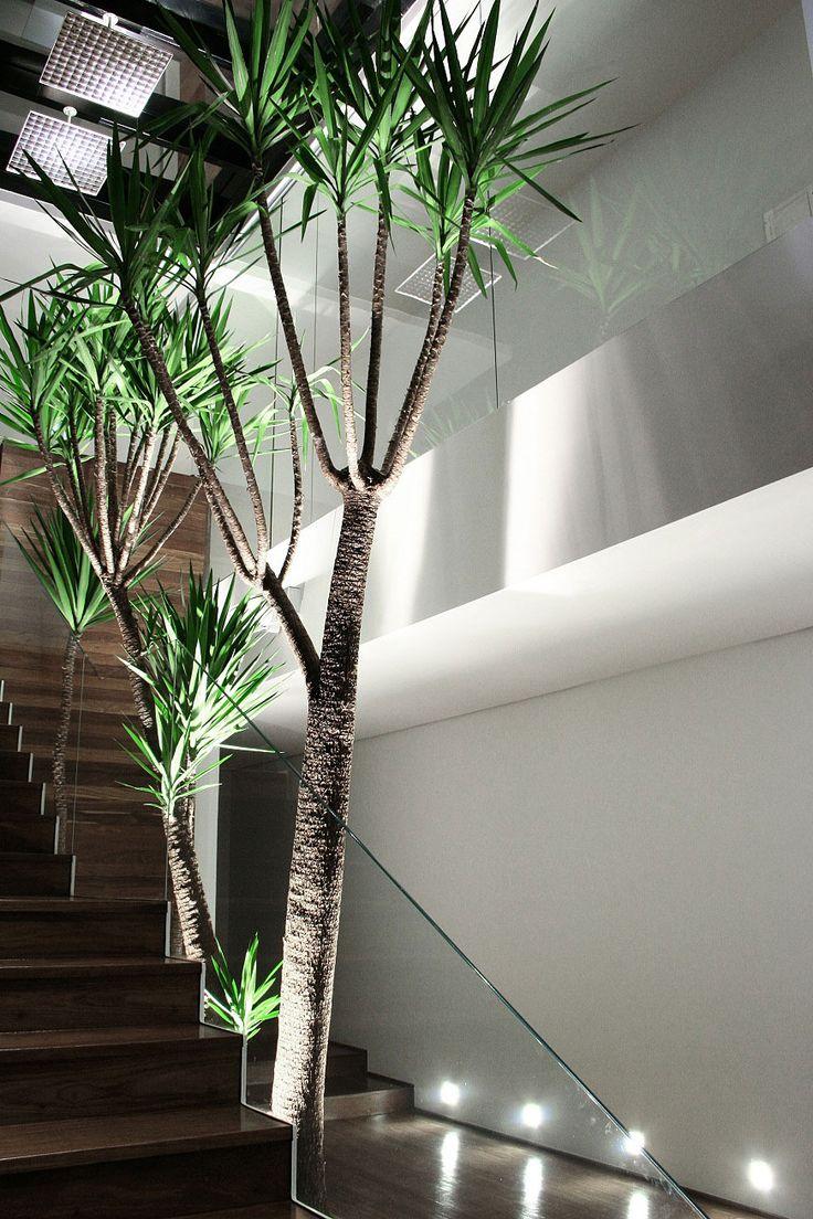 Interior view of the Casa VM in Brazil by Studio Guilerme Torres _
