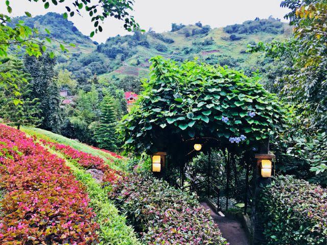 Terrazas De Flores Botanical Garden Cebu City Cebu Tourist Spots