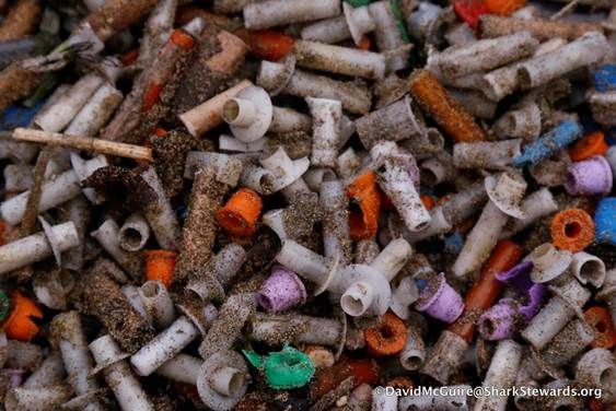 30 Pounds of Cardboard, 1,000 Pieces of Plastic Litter San Francisco's Aquatic Park After Super Bowl Fireworks Show   NBC Bay Area http://goo.gl/BmbXkp