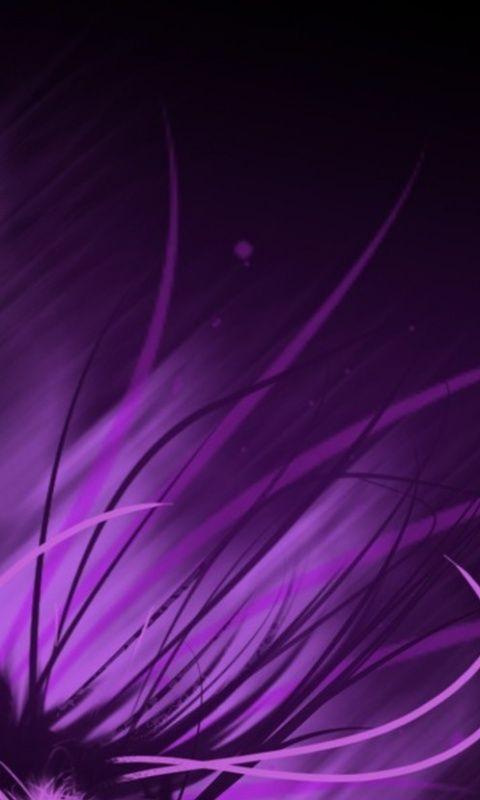Violet ( purple ) - Paars