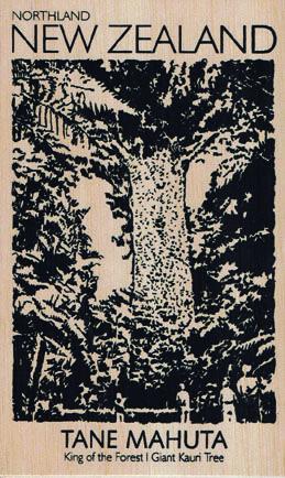 NZ+Tane+Mahuta+Kauri+Tree+Wooden+Postcard http://www.shopenzed.com/nz-tane-mahuta-kauri-tree-wooden-postcard-xidp1353912.html