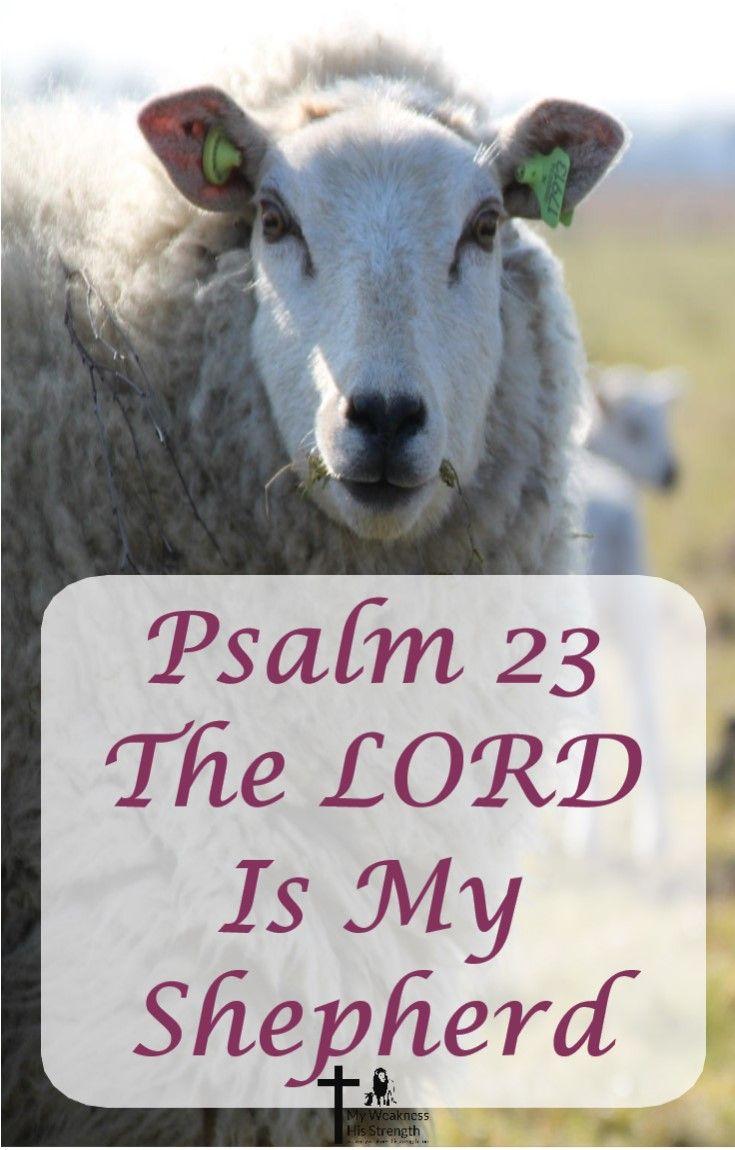 The Lord is a good Shepherd of His people, #mentalhealth #shepherd #sheep #Psalm23