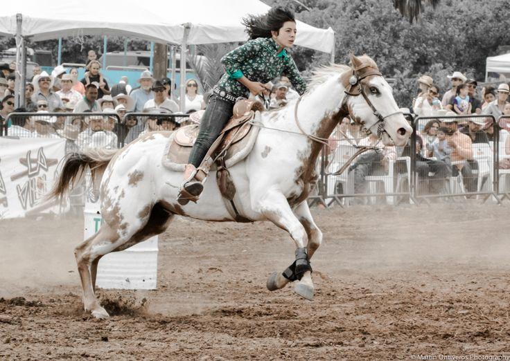 Feria del caballo, Valle de Guadalupe @ Baron Balche