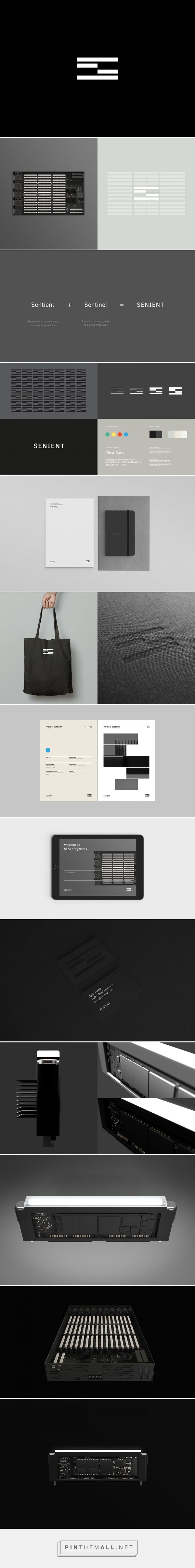 Senient Systems on Behance - created via https://pinthemall.net