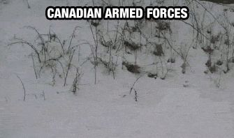 Canadian army...