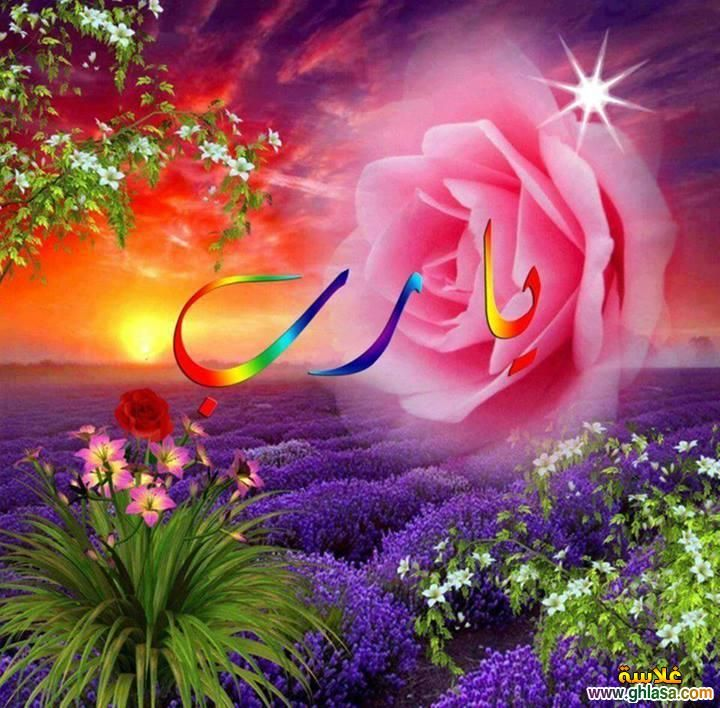 Agmal Wardaa اجمل ورده حسام دبور