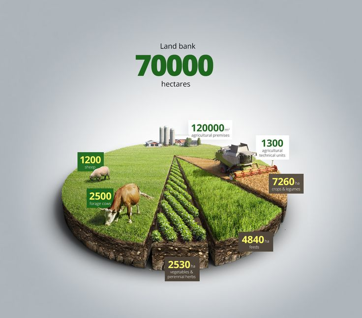Agricultural infographics on Behance