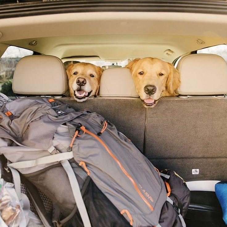 "Samantha Brooke on Instagram: ""Let's go, ma. Swipe right to start our Three Ridges Hike camping trip in @blueridgenps @visitvirginia !"""