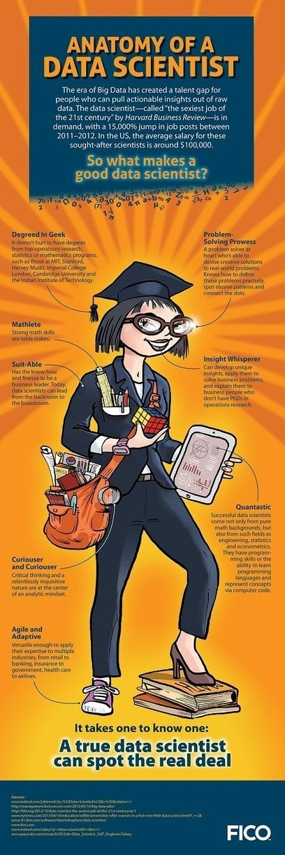 Infographic: Anatomy of a Data Scientist – FICO Labs Blog