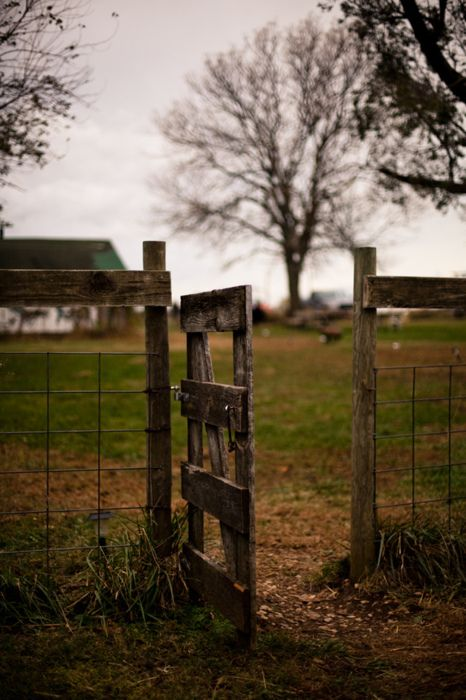 Insanely beautiful pictures.: Summer Picnic, Country Fence, Country Girls, Country Living, Gardens Gates, Farms Gates, Country Life, Old Gates, Gates Garden