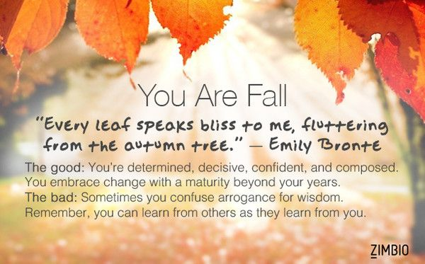 If You Were a Season, Which Season Would You Be? I'd be Fall, my favorite season!!!