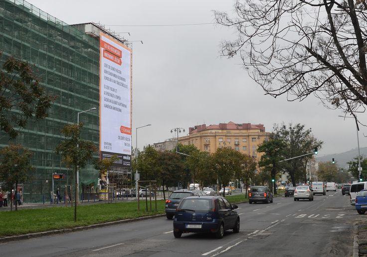 November végéig lesz látható a CIB Bank épülethálója a XI. kerületi Kosztolányi Dezső téren  #kutya #hírek #állatvédelem #jótékonyság #cib #kutyabaráthelyek