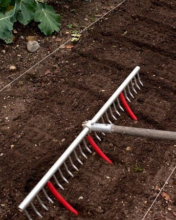 rake with cut off tubes for pre-measured row spacing