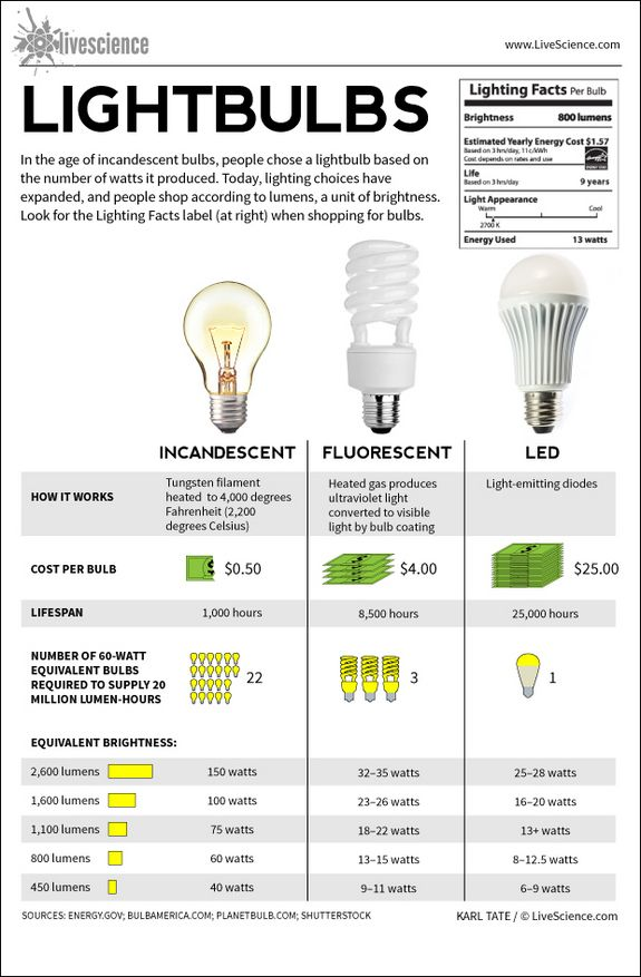 Infographic: Facts about different types of light bulbs,