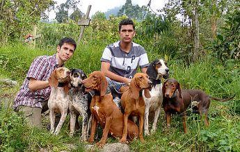 Grupo de sabuesos finos colombianos con Jonathan Alvarez y  Richard Martínez, investigadores del grupo de estudio de genética animal de la Universidad nacional en Bogotá. Foto:UN.
