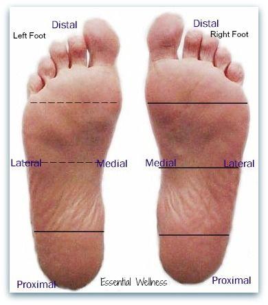 How To Improve Digestion Through Your Feet | Divine Health. http://www.mydoterra.com/desireenordstrom/