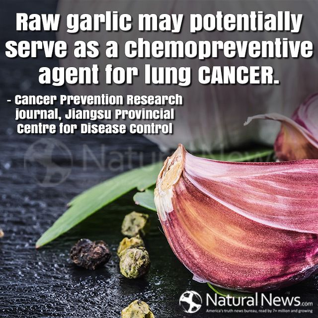 Everything there is to know about lung cancer Raw garlic may potentially serve as a chemopreventive agent for lung cancer.