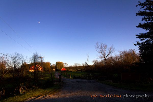 A view of Unionville Vineyards at dusk, photographed by Kyo Morishima