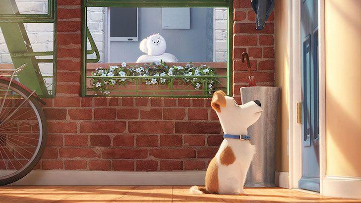 Watch: The Secret Life of Pets Movie Trailer | Vanillapup
