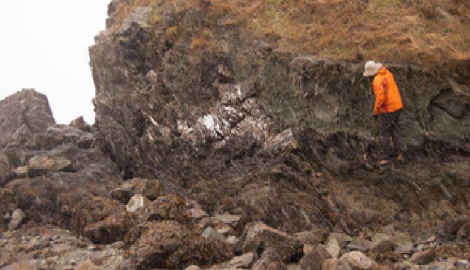 SHAMPOO MADU KUTU RAMBUT: Ditemukan, Kehidupan 19 Km di Bawah Permukaan Bumi...