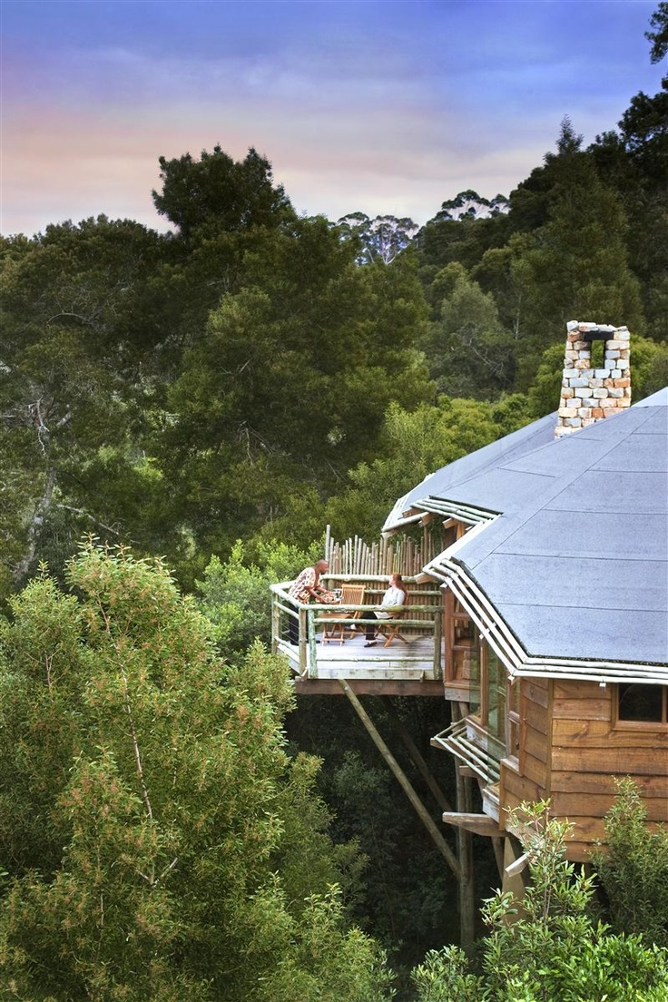 Tsala Treetop Lodge in South Africa