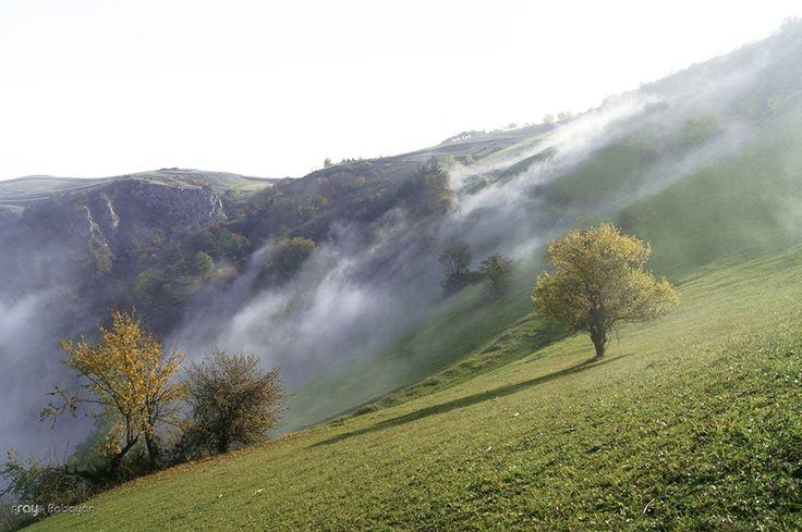Fog by Arayik Babayan(Ray) on 500px